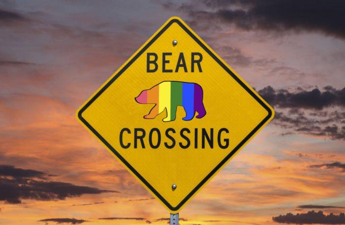 Rencontre bear, site gay bear : comment faire ?